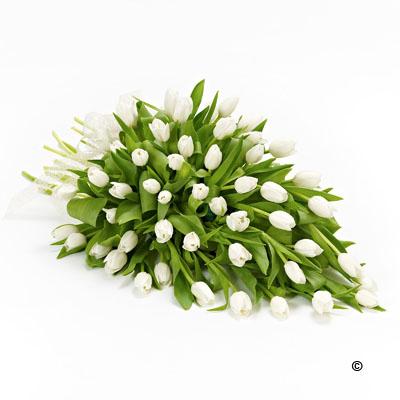Tulip Posy - from £65.00